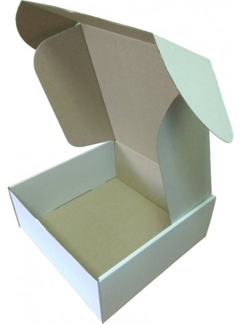 Коробка (250 х 250 х 100), белая