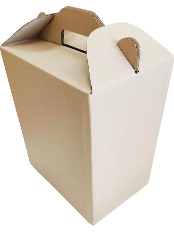 Коробка (250 x 170 x 300), бурая