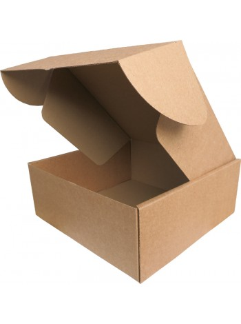 Коробка (250 х 250 х 100), бурая